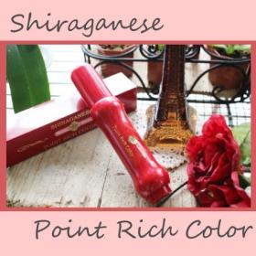 ポイント白髪ケア シラガネーゼポイントリッチカラーの商品画像