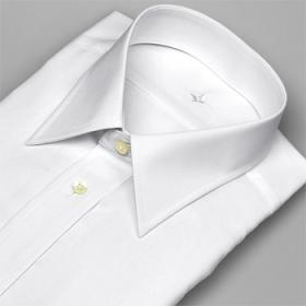 日清紡アポロコット ワイシャツ 長袖 綿100% 形態安定 レギュラーカラー 白の商品画像