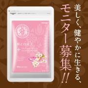 桜と白美人の商品画像