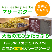 Harvesting Herbs マザーポターの商品画像