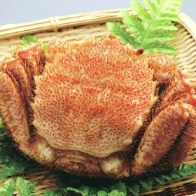 「北海道産毛ガニ(株式会社かば田食品)」の商品画像
