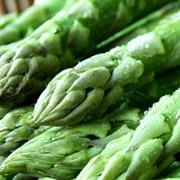 穂先はまるでトウモロコシの甘さ!「朝採れ」北海道美唄産雪どけグリーンアスパラの商品画像