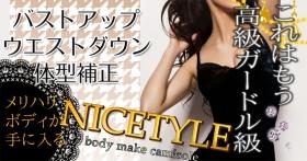 NICETYLE~ナイスタイル~の商品画像