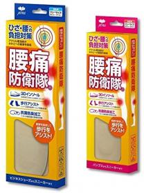 膝・腰の痛み負担対策 腰痛防衛隊インソールの商品画像