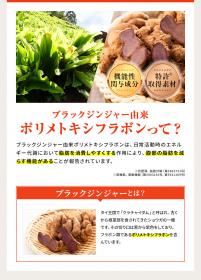 「【機能性表示食品】おなかの脂肪を減らす! メタプラス ウエスト(株式会社メタボリック)」の商品画像の2枚目