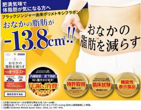 「【機能性表示食品】おなかの脂肪を減らす! メタプラス ウエスト(株式会社メタボリック)」の商品画像の4枚目