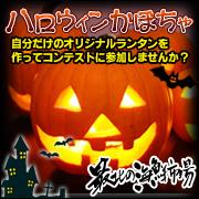 ハロウィン用かぼちゃの商品画像