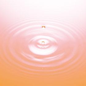 「然-しかり-シルク美容液・長寿の里 (長寿の里)」の商品画像の3枚目