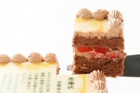 「感謝状ケーキ 12cm×15cm(株式会社FLASHPARK)」の商品画像の3枚目