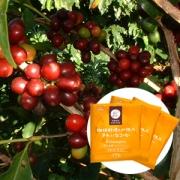 「樹上完熟キリマンジャロ(ドリップタイプ)(オアシス珈琲有限会社)」の商品画像