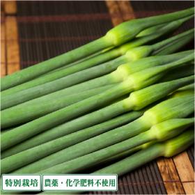 ふるさと21株式会社の取り扱い商品「無農薬『無臭ニンニクの芽』(青森県 須藤農園)」の画像