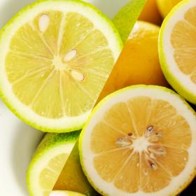 「ふるさと21のレモンとレモンライム2種セット(ふるさと21株式会社)」の商品画像