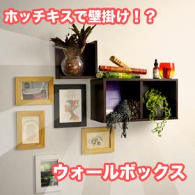 ホッチキスで壁に固定 ウォールボックスの商品画像