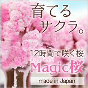 マジック桜 Made in Japanの商品画像