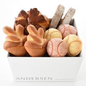 「【送料込】Vパンセット(株式会社アンデルセン)」の商品画像