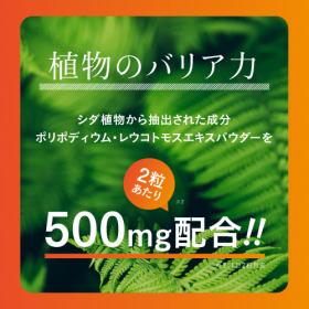 「ヘリオスキン 60粒(株式会社エクセレントメディカル)」の商品画像の2枚目