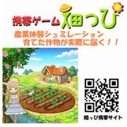 「農業体験シュミレーション!【畑っぴ】(株式会社エルディ)」の商品画像