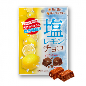 CHOCOサプリ 塩レモンチョコの商品画像