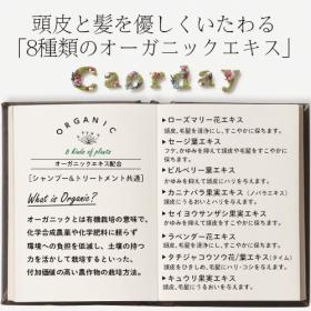 「カオルデイ シャンプーS3 + トリートメントT3 お試しセット(ハルコスメティックス)」の商品画像の2枚目