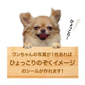 「ひょっこり犬シールセット(株式会社スキルマン・ディアカーズ)」の商品画像