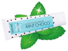 クラウディア マジック ハーブ歯磨き粉(ミントチョコ)の商品画像