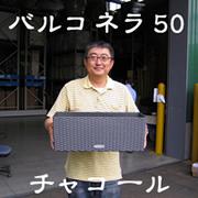 「レチューザ・バルコネラ50(有限会社 ビージェイ(アセロラ倶楽部&EMX倶楽部))」の商品画像