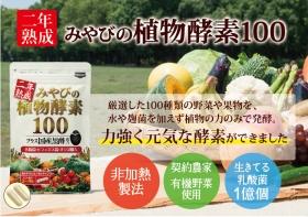 二年熟成みやびの植物酵素100の商品画像