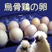 烏骨鶏の卵 10個入りの商品画像