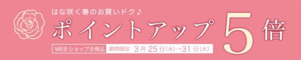 ブラックペイント WEB SHOP「店内全品ポイント5倍キャンペーン」