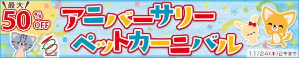 本日よりSALE開催!!