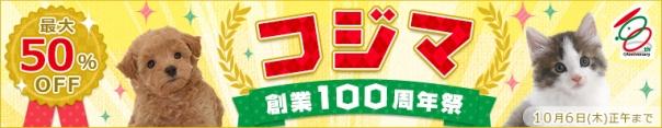 最大50%オフ!本日よりコジマ創業100周年祭開催!!